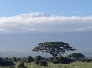 Mt. Kilimanjaro made a brief appearance early in the morning.
